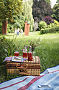 Picnic in park with strawberry syrup - EVGF000774