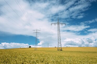 Germany, Baden-Wuerttemberg, Constance district, Barley field and power pylons - ELF001243