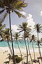 Caribbean, Antilles, Lesser Antilles, Barbados, Bottom Bay, beach - SK001583