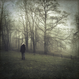 Germany, near Wuppertal, Man looking to birds, Foggy day in winter, Textured effect - DWI000130