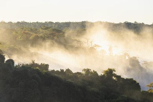 South America, Brazil, Parana, Iguazu National Park, Iguazu Falls, Forest and water vapour - FO006656