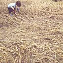 Girl in stubble field - LVF001725