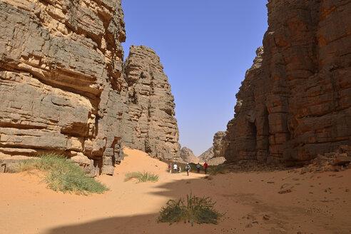 Africa, Algeria, Sahara, Tassili N'Ajjer National Park, Tadrart, Group of people hiking in Immourouden - ES001288