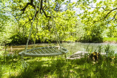 Empty nest swing at lakeshore - TCF004150