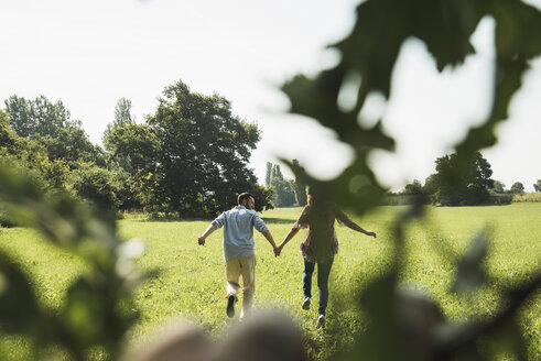 Young couple running hand in hand on a meadow, back view - UUF001526