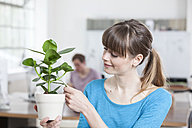 Portrait of young woman with potted plant in an creative office - RBF001731
