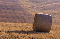 Italy, Tuscany, stubble field with hay bale - RUEF001291