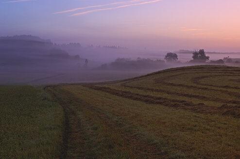 Germany, Bavaria, landscape with morning at sunrise - RUEF001290