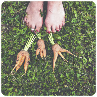 Woman's feet and carrots - SHI000032
