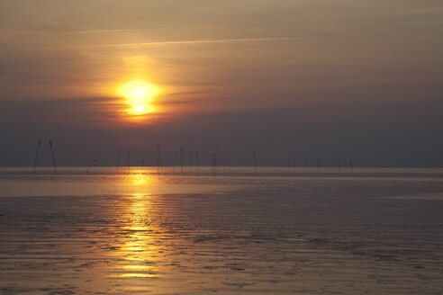 Germany, Lower Saxony, Dorum, Sunset at the wadden sea - OLE000026