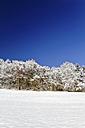 Germany, Black Forest, Snow-covered landscape - KRPF000800