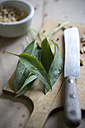 Ramson leaves, pine nuts and knife on chopping board - ASF005459