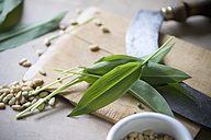 Fresh Ramson leaves and pine nuts on chopping board - ASF005460