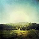 Germany, Baden-Wurttemberg, Tubingen, Field landscape - LVF001761