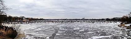 Germany, Hamburg, Panoramic view of the Alster Lake in winter - KRPF000960