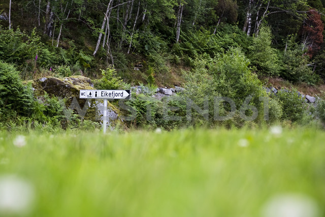 Norway, Eikefjord, sign at forrest - NGF000133