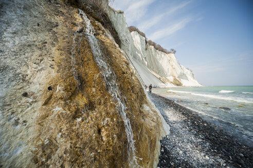 Denmark, Mon Island, Mons Klint, Chalk cliffs - PA000758