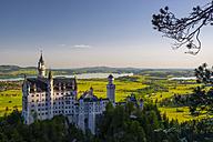 Germany, Bavaria, Swabia, Allgaeu, East Allgaeu, Schwangau, Hohenschangau, Neuschwanstein Castle - WG000415