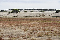 Australia, South Australia, Coorong District, deserted landscape opposite the Encounter Bay - MIZ000555
