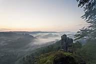 Germany, Saxony, morning mist at Elbe Sandstone Mountains - MS004134