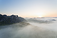 Germany, Saxony, view to Gansfels at Elbe Sandstone Mountains in the morning mist - MS004111