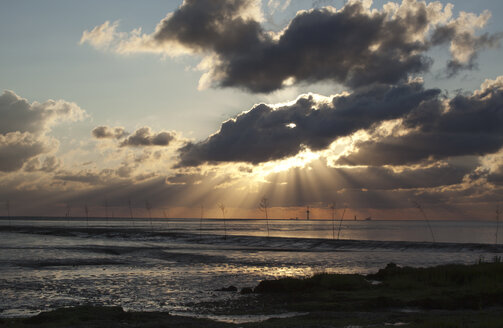 Germany, Lower Saxony, Wremen, Tideland at sunset - OLEF000033