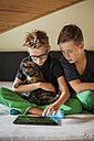 Two boys sitting on bed with a cat using digital tablet - PAF000884