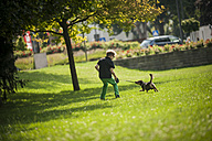Boy playing with his dog on a meadow - PAF000889