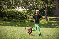 Boy playing with his dog on a meadow - PAF000890