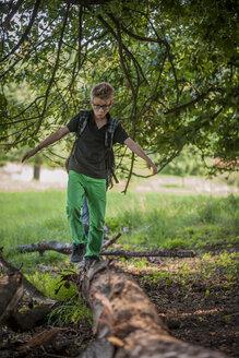 Boy balancing on a deadwood - PAF000870