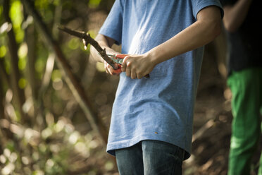 Boy carving twigs with his pocket knife in a forest, partial view - PAF000878