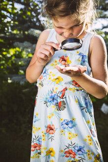 Germany, Northrhine Westphalia, Bornheim, Girl examining snail with magnifying glass - MFF001214