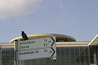 Germany, Berlin, bird sitting on direction sign - CM000162