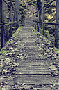 Germany, Baden Wuerttemberg, Black Forest, wooden bridge - MID000002
