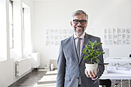 Portrait of smiling businessman with flower pot in an office - RBF001882