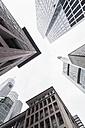 Germany, Hesse, Frankfurt, view to facades of modern office buildings from below - WDF002577