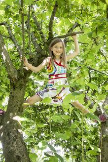 Little girl climbing on a tree in the garden - SARF000787