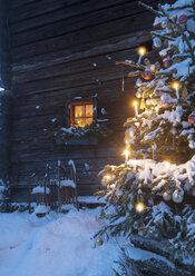 Austria, Salzburg State, Altenmarkt-Zauchensee, facade of wooden cabin with lightened Christmas Tree in the foreground - HHF004863