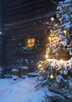 Austria, Salzburg State, Altenmarkt-Zauchensee, facade of wooden cabin with lightened Christmas Tree in the foreground - HHF004863