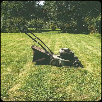Lawnmower in garden - SHIF000076