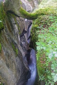 Austria, Salzburg State, Tennengau, Hallein, Taugl brook in the Strubklamm - GF000549