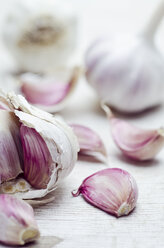Close up of garlic bulbs and cloves - CZF000162