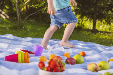 Boy walking on a picnic blanket with fruit - MFF001289