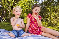 Boy and girl enjoying fruit on picnic blanket in garden - MFF001296