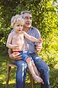 Boy sitting on lap of his grandfather in garden - MFF001299