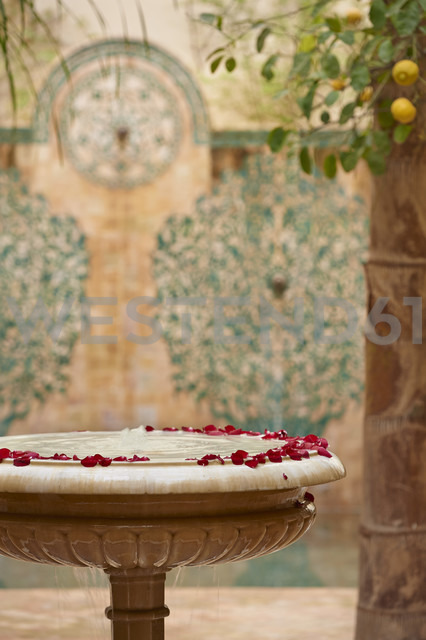 Morocco, Fes, Hotel Riad Fes, marble fountain with red rose petals - KMF001492