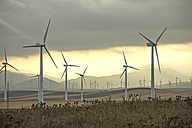 Spain, Andalusia, Tarifa, Wind farm - KBF000175