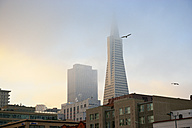 USA, California, San Francisco, Transamerica Pyramid in morning fog - BRF000728