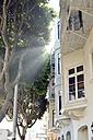 USA, California, San Francisco, sunbeams falling through trees at house - BR000757