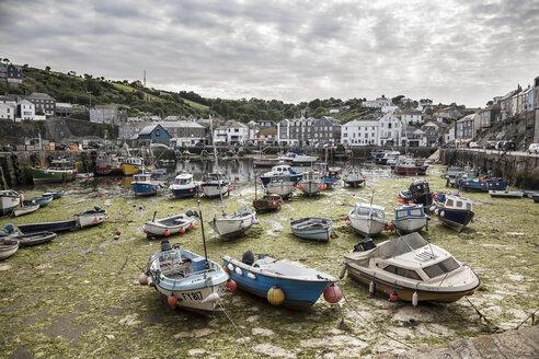 Großbritannien, England, Cornwall, Mevagissey, Harbour, boats at low tide - DISF001014
